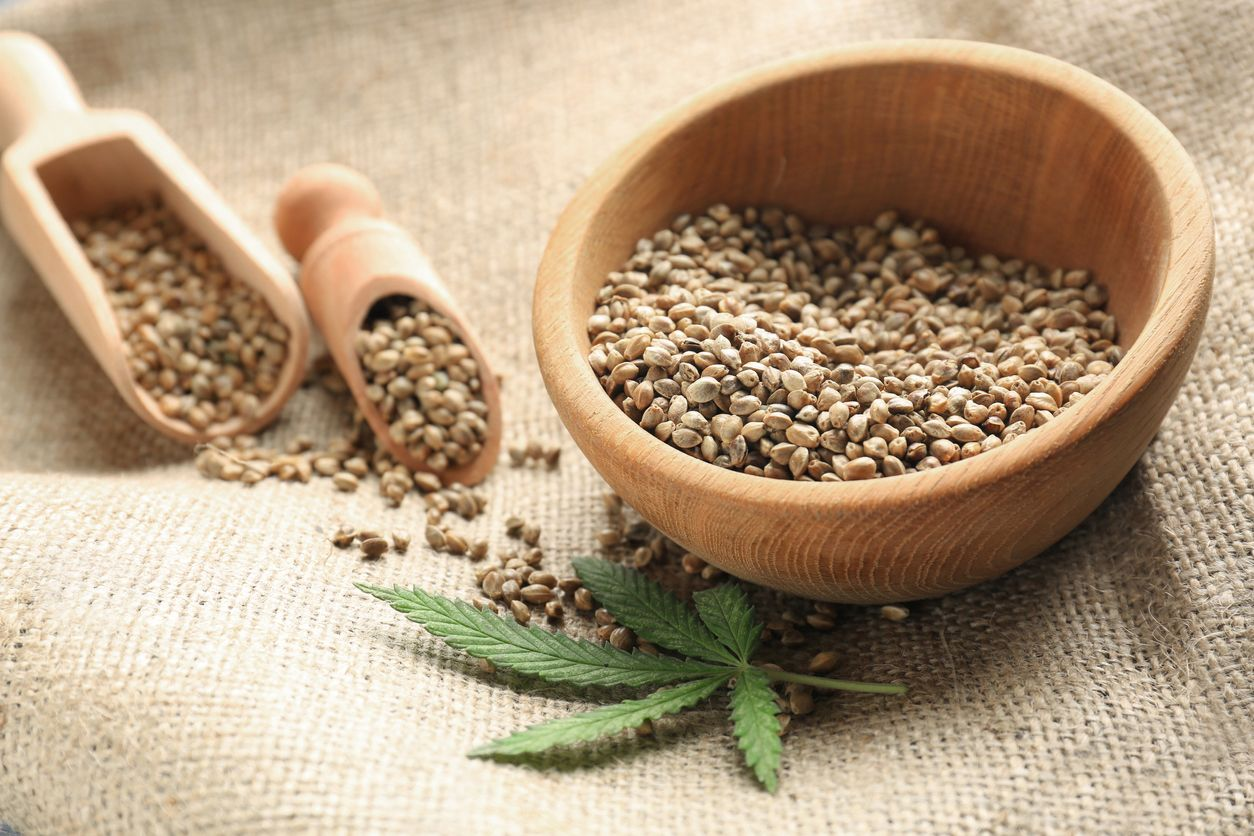 Important Facts About Hemp Seeds!