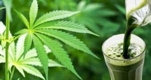 Yup, You Can Juice Cannabis