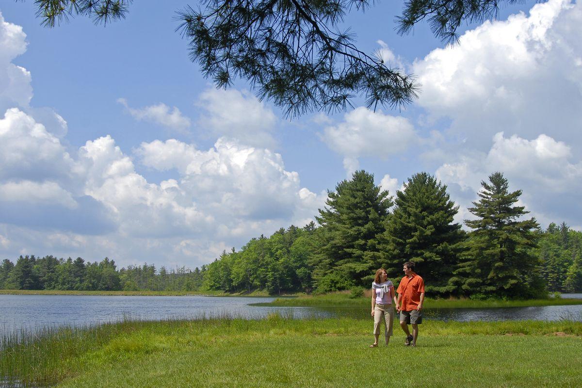 image lake sherwood walkers