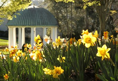 spring house and gardens at the greenbrier