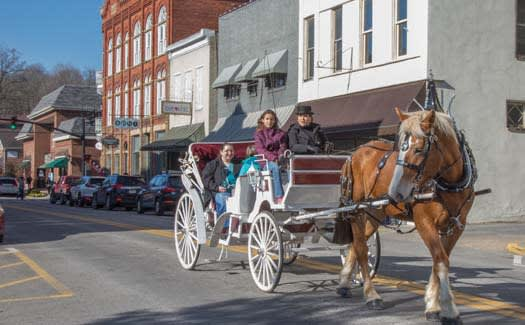 image holiday festival horse carriage 525x325