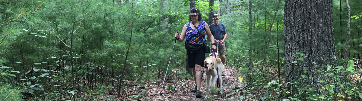 image hiking greenbrier state forest