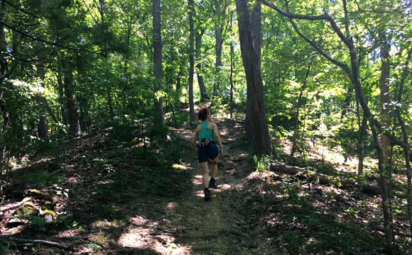 image hiking rocky ridge trail