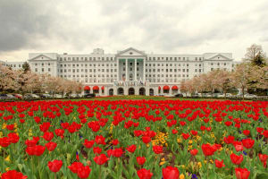 image the greenbrier front entrance tulips 1200x800