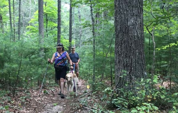 image hikers greenbrier state forest 580x370