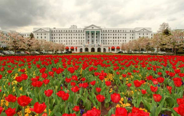 image the greenbrier spring tulips 570x360
