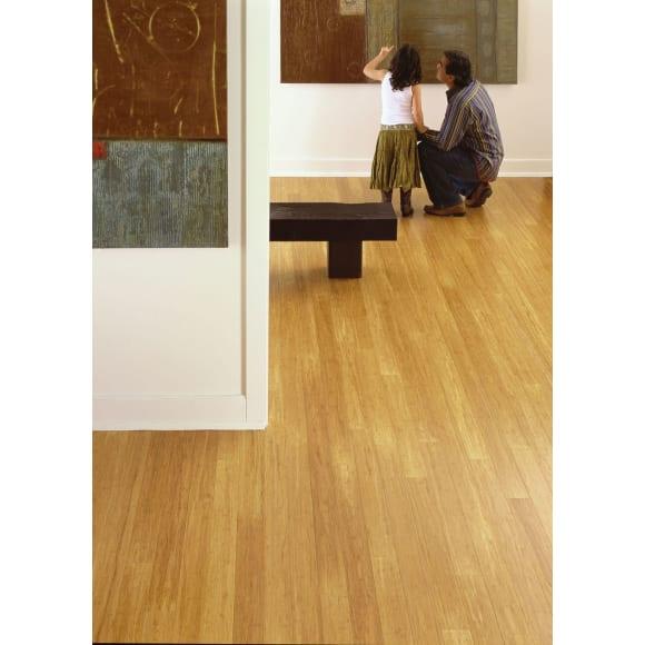 Teragren Synergy Wide Plank Strand Bamboo Flooring