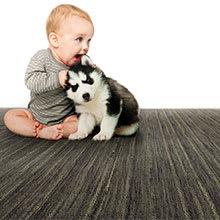Wool Carpet by Earth Weave, Catskill