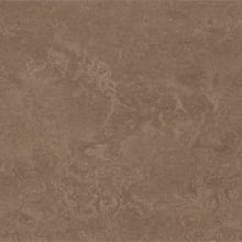 Forbo Marmoleum Composition Sheet (MCS), Clay - CP-3254