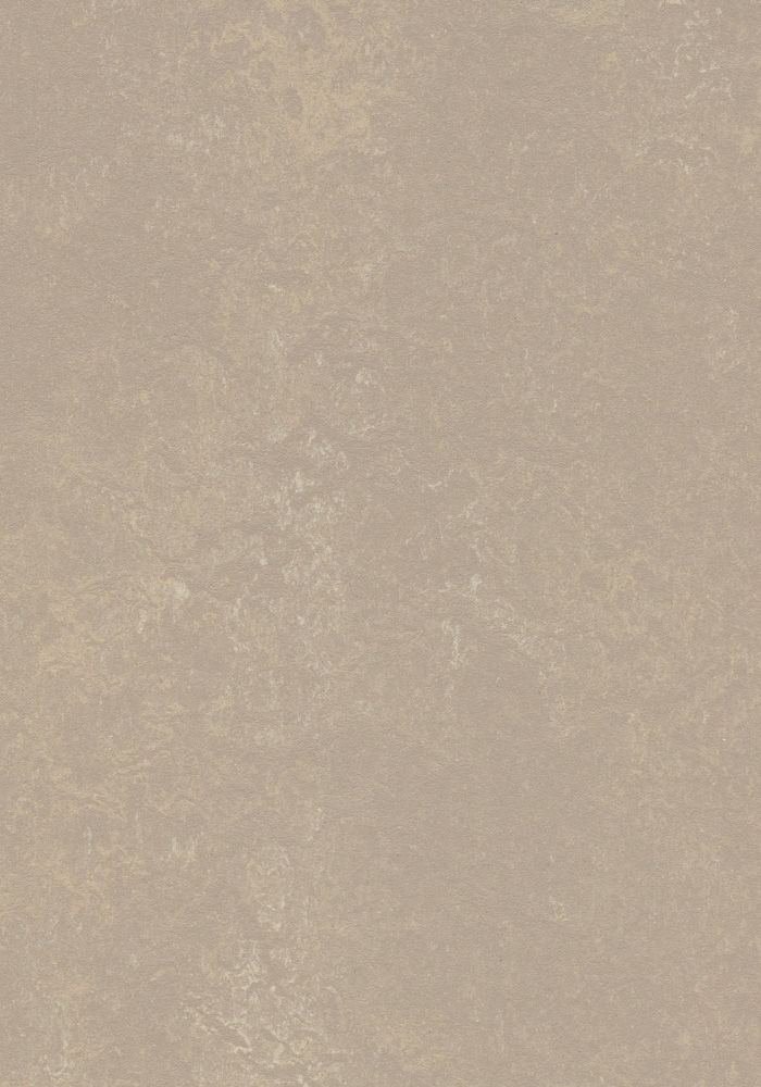 Forbo Marmoleum Concrete Fossil 3708 2 5mm