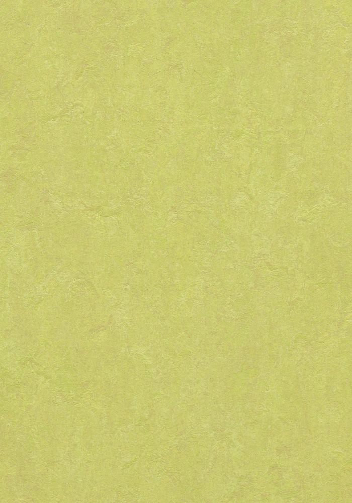 Forbo Marmoleum Fresco Spring Buds 3885 2 5mm
