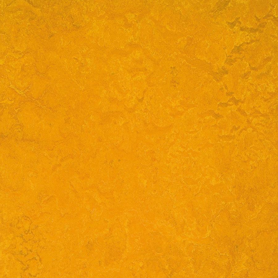 Forbo Marmoleum Composition Sheet Golden Sunset Cp 3125