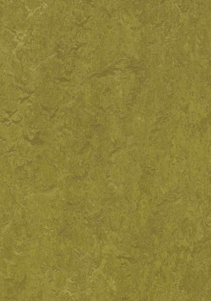 Forbo Marmoleum Real Olive Green 3239 2 5mm