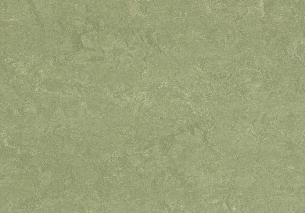 Forbo Marmoleum Composition Sheet Willow Cp 3240 2 5mm