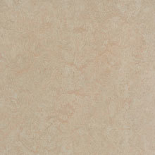 Forbo Marmoleum Fresco, Silver Birch - 3871