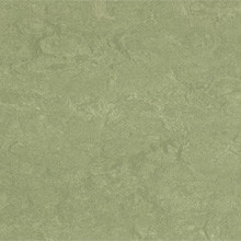Forbo Marmoleum Real, Willow - 3240