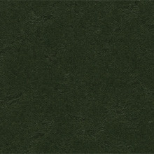 Forbo Marmoleum Walton Cirrus, Bottle Green - 3359