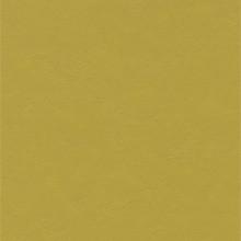 Forbo Marmoleum Walton Cirrus, Yellow Moss - 3362
