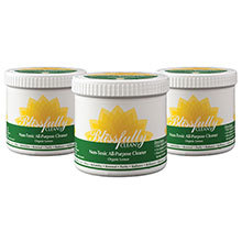 Green Building Supply, Blissfully Clean, 500g, Lemon, Case of 12