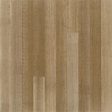 Teragren Essence, Engineered Wide-Plank, Strand Woven Sustainable Bamboo Flooring, Grasslands