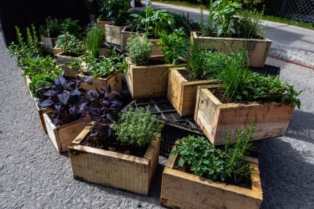How to seal your wooden raised bed garden