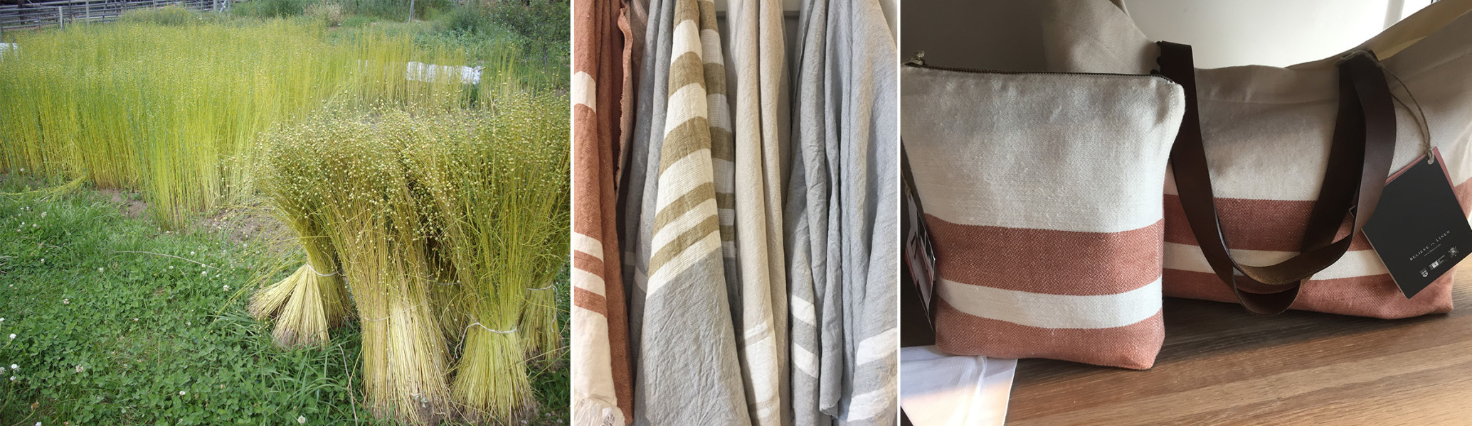 Eco Friendly Fabrics | Greenhouse Fabrics