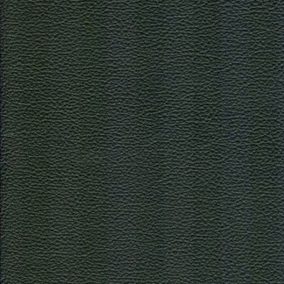 74481 Evergreen Fabric: L03, EVERGREEN, OREGANO, GREEN LEATHER, SKINS, HIDE, FULL GRAIN LEATHER, LEATHER, UPHOLSTERY, UPHOLSTERY LEATHER, GREEN SKINS