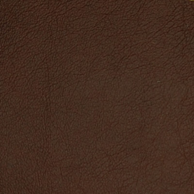 75237 Cafe Fabric: L10, L05, L09, LEATHER, LEATHER CARD, LEATHER HIDE, LEATHER HIDES, BROWN LEATHER