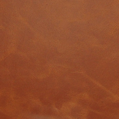 A2246 Amber Fabric: L10, L07, L08, AMBER, BROWN LEATHER, LEATHER, UPHOLSTERY LEATHER, DISTRESSED LEATHER