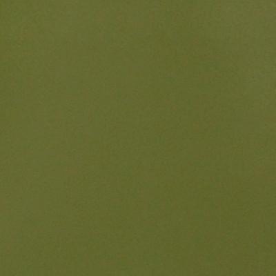 A4112 Pale Green Fabric: E11, B53, VINYL, CAO, GREEN, GREEN VINYL, CONTRACT VINYL, OFFICE VINYL, RESTAURANT VINYL, HOSPITALITY VINYL, AUTOMOTIVE, AUTO, CARS, RV, COMMERCIAL VINYL