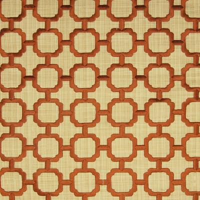 A4766 Daisy Fabric: B69, CONTEMPORARY, FRAME, FRAMES, CONTEMPORARY FRAMES