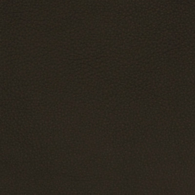 A7670 Raven Fabric: L09, LEATHER, LEATHER CARD, LEATHER HIDE, LEATHER HIDES, BLACK LEATHER, AUTOMOTIVE LEATHER, UPHOLSTERY LEATHER