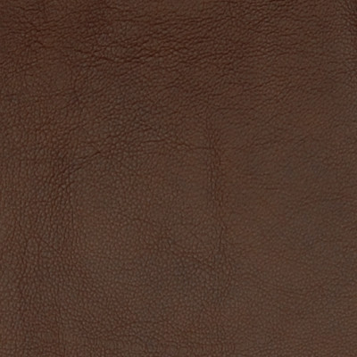 A7679 Pinto Fabric: L10, L09, LEATHER, LEATHER CARD, LEATHER HIDE, LEATHER HIDES, BROWN LEATHER, UPHOLSTERY LEATHER