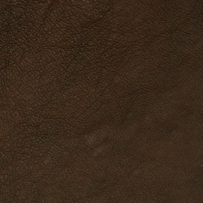 A7680 Cocoa Fabric: L10, L09, LEATHER, LEATHER CARD, LEATHER HIDE, LEATHER HIDES, BROWN LEATHER
