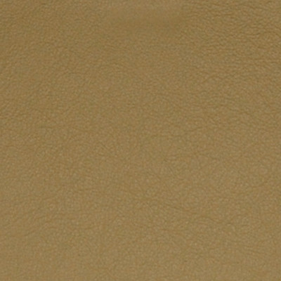 A7702 Ginger Fabric: L09, LEATHER, LEATHER CARD, LEATHER HIDE, LEATHER HIDES, RED LEATHER, AUTOMOTIVE LEATHER, UPHOLSTERY LEATHER