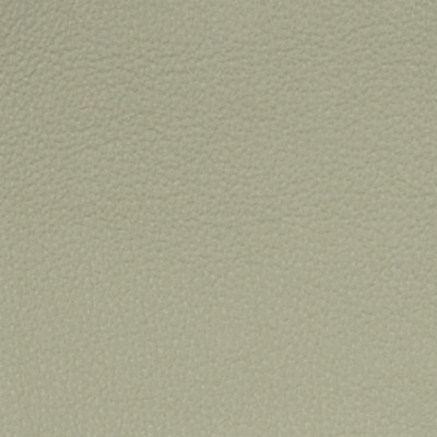 A7750 Pumas Fabric: L09, LEATHER, LEATHER CARD, LEATHER HIDE, LEATHER HIDES, NEUTRAL LEATHER, AUTOMOTIVE LEATHER, UPHOLSTERY LEATHER