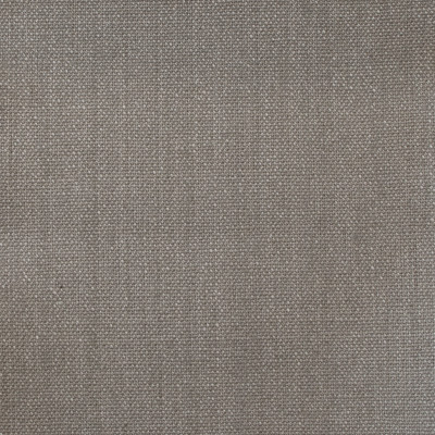 A7815 Metal Fabric: E45, D77, C24, METAL, LINEN, 100% LINEN, ESSENTIALS, ESSENTIAL FABRIC