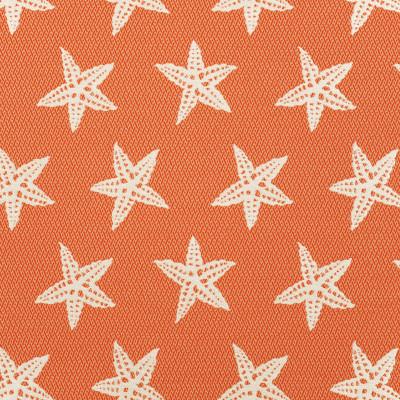 A8036 Firecracker Fabric: D79, C30, OUTDOOR, OUTDOOR FABRICS, FIRECRACKER, STARFISH, OUTDOOR ANIMAL