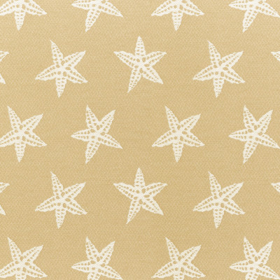 A8063 Sand Fabric: D79, C30, OUTDOOR, OUTDOOR FABRICS, SAND, STARFISH, BEACH, ANIMAL