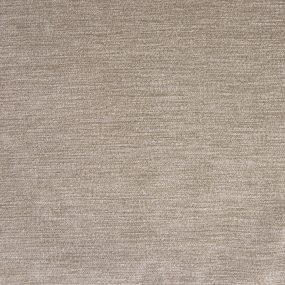 A8282 Mushroom Fabric: E60, E59, E48, D77, D43, D10, C82, C37, GREY, NEUTRAL, SOLID GREY, GREY FABRIC, SOLID FABRIC, GRAY, SOLID GRAY, GRAY FABRIC, GRAY VELVET, GRAY SOLID, STONE VELVET, GREY STRIE VELVET, GRAY STRIE VELVET, ESSENTIALS, ESSENTIAL FABRIC, WOVEN