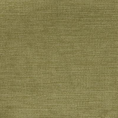 A8301 Sage Fabric: E48, D74, D10, C82, C37, ESSENTIALS, ESSENTIAL FABRIC, SOLID GREEN, GREEN FABRIC, SOLID FABRIC, SOLID, GREEN VELVET, GREEN SOLID, FERN VELVET, GREEN STRIE VELVET, MOSS VELVET, MOSS SOLID, FERN SOLID, SAGE SOLID