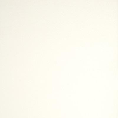 A9201 White Fabric: E65, C58, SOLID, VINYL, WHITE, SOLID VINYL, WHITE SOLID, WHITE VINYL, FAUX LEATHER, WHITE FAUX LEATHER, AUTOMOTIVE, AUTO