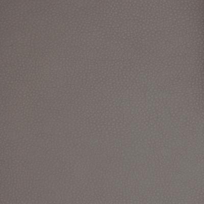 A9220 Steel Fabric: E65, C58, SOLID, VINYL, GRAY, FAUX LEATHER, SOLID VINYL, GRAY SOLID, GREY, GREY SOLID, GRAY VINYL, GREY VINYL, GRAY FAUX LEATHER, GREY FAUX LEATHER, AUTOMOTIVE, AUTO