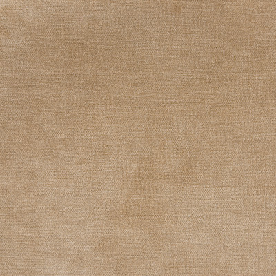 B1255 Taupe Fabric: E99, E48, D43, C82, BEIGE SOLID, SOLID BEIGE, BEIGE VELVET, KHAKI VELVET, NEUTRAL VELVET, NEUTRAL SOLID, BEIGE STRIE VELVET, WOVEN