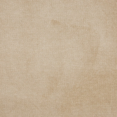 B1257 Neutral Fabric: E99, E48, E30, D78, D43, D10, C82, BEIGE SOLID, SOLID BEIGE, BEIGE VELVET, KHAKI VELVET, NEUTRAL VELVET, NEUTRAL SOLID, BEIGE STRIE VELVET, ESSENTIALS, ESSENTIAL FABRIC, WOVEN