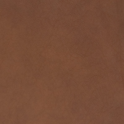B1703 Golden Rod Fabric: L10, LEATHER, LEATHER HIDE, BROWN