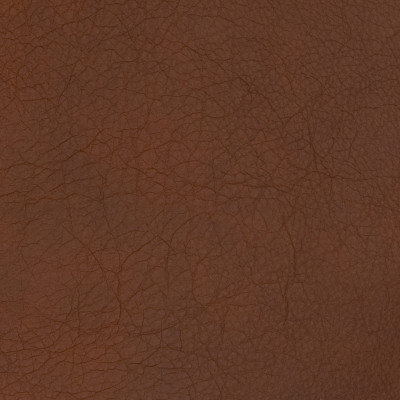 B1704 Tigers Eye Fabric: L10, LEATHER, LEATHER HIDE, BROWN