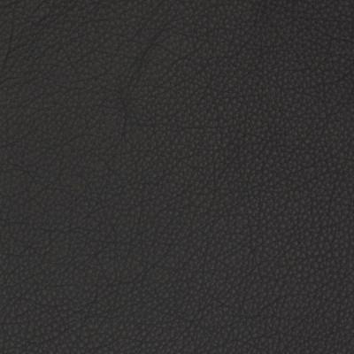 B1706 Nocturnal Fabric: L10