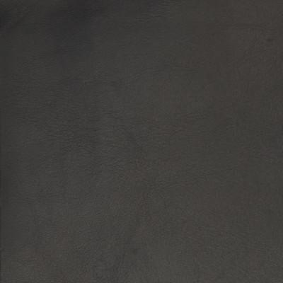 B1708 Night Owl Fabric: L10