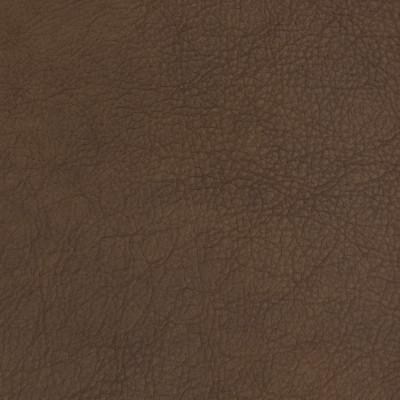 B1717 Fudgesicle Fabric: L10
